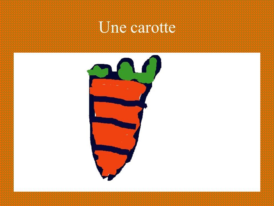 Une carotte