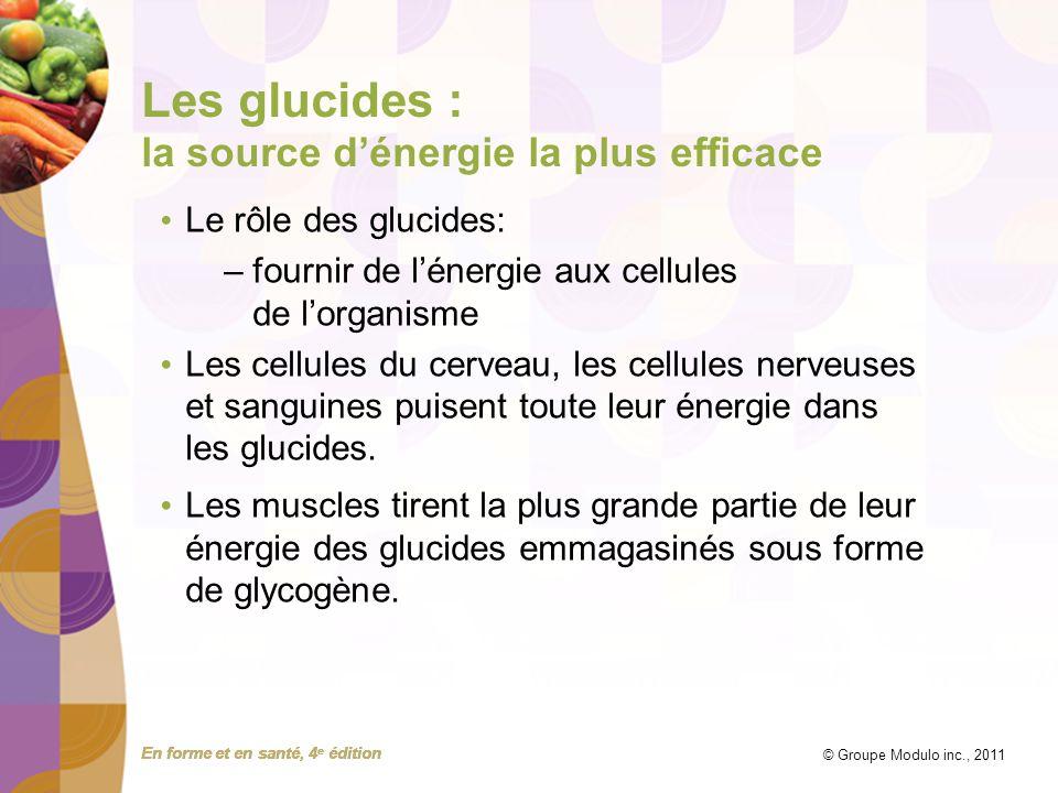 Les glucides : la source d'énergie la plus efficace