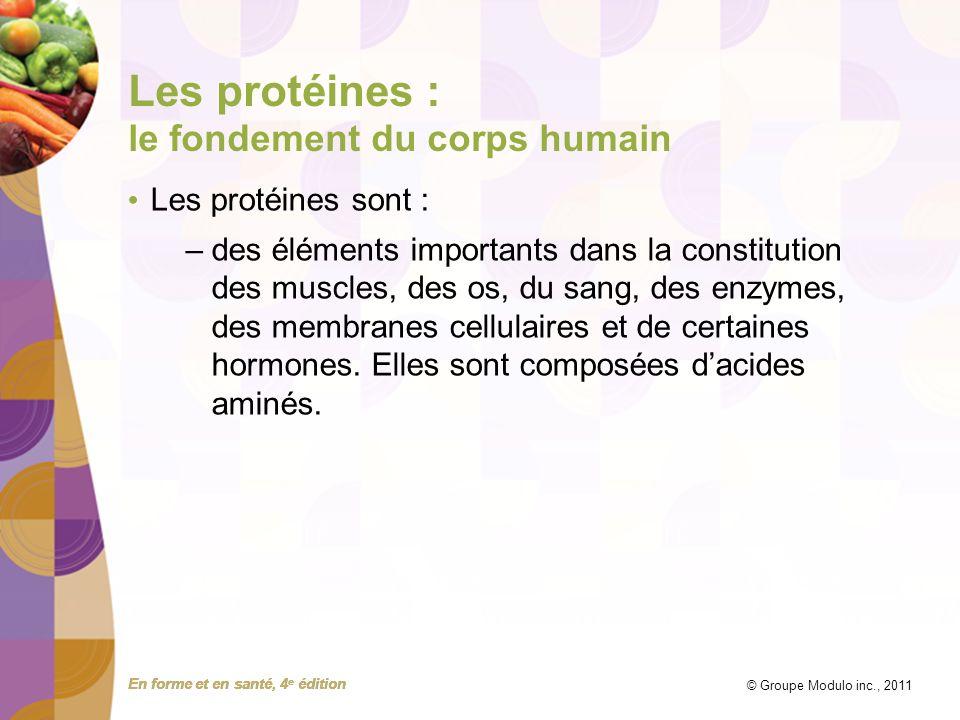 Les protéines : le fondement du corps humain