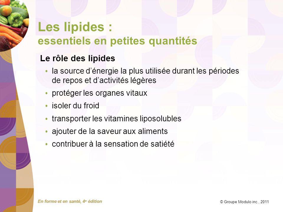 Les lipides : essentiels en petites quantités