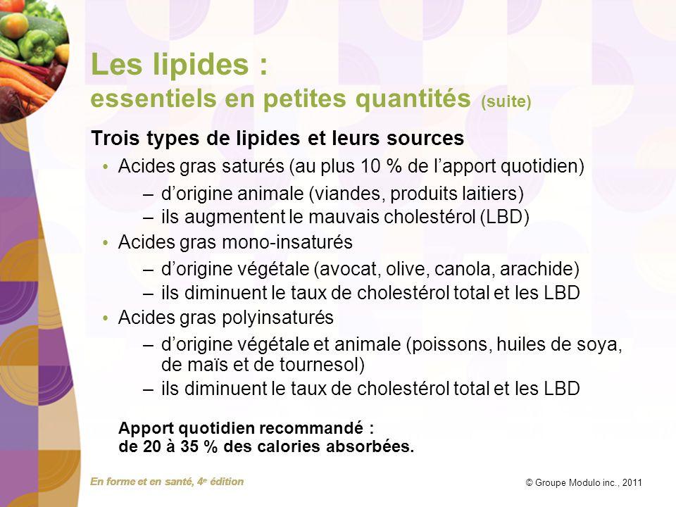 Les lipides : essentiels en petites quantités (suite)