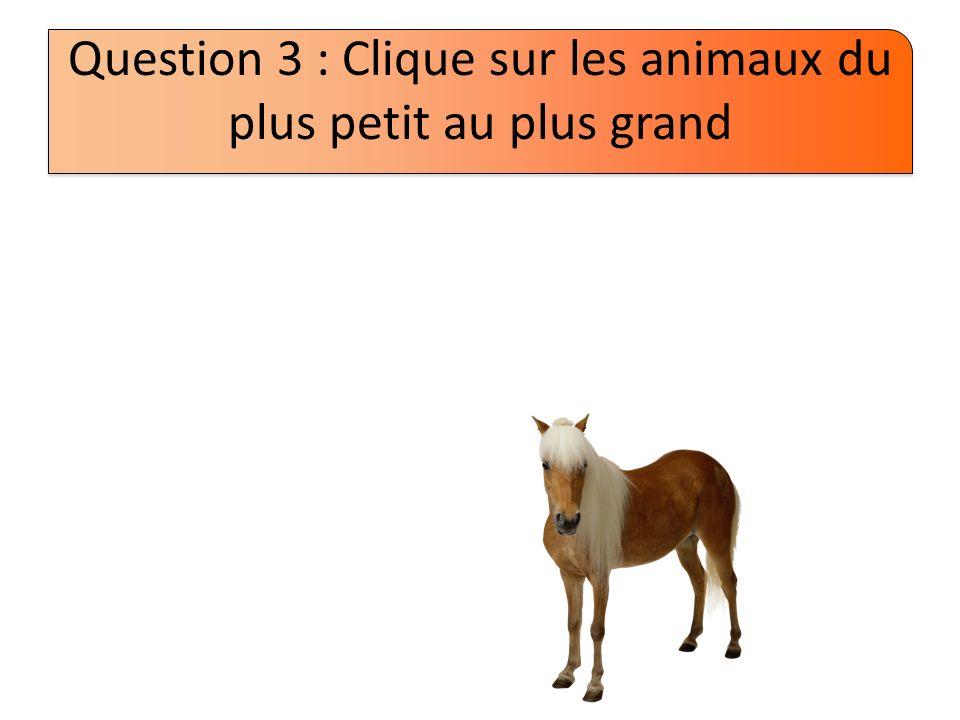 Question 3 : Clique sur les animaux du plus petit au plus grand