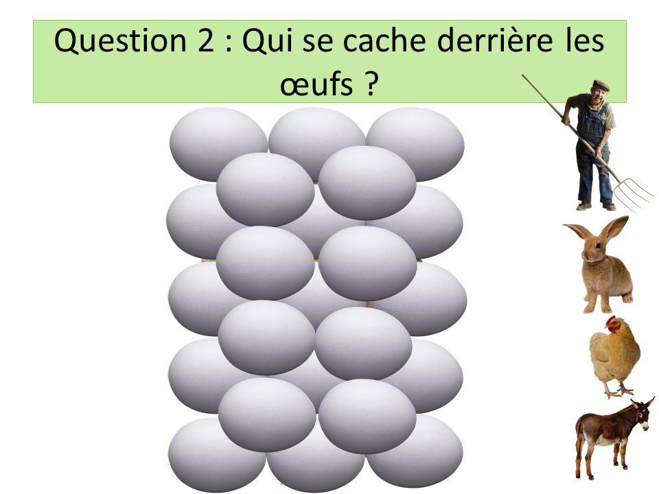 Question 2 : Qui se cache derrière les œufs