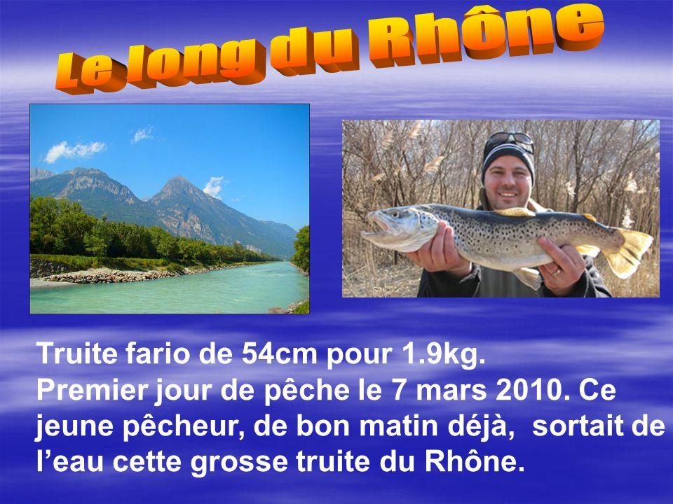 Truite fario de 54cm pour 1.9kg.