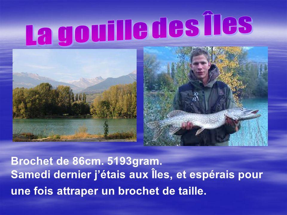 La gouille des Îles Brochet de 86cm. 5193gram.