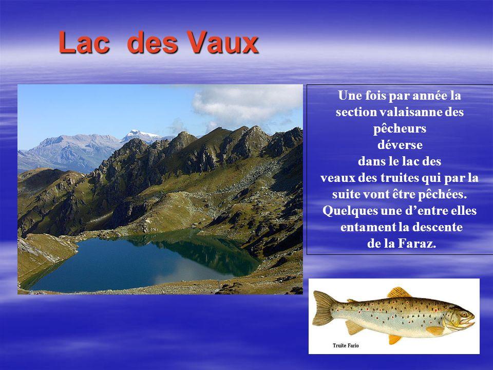 Lac des Vaux Une fois par année la section valaisanne des pêcheurs