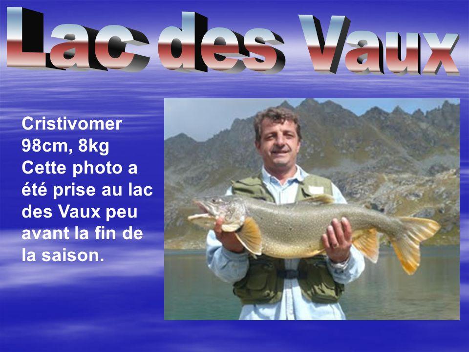 Cette photo a été prise au lac des Vaux peu avant la fin de la saison.