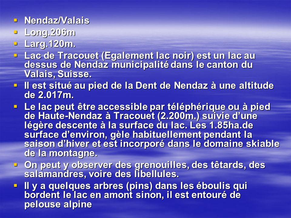 Nendaz/Valais Long.206m. Larg.120m.