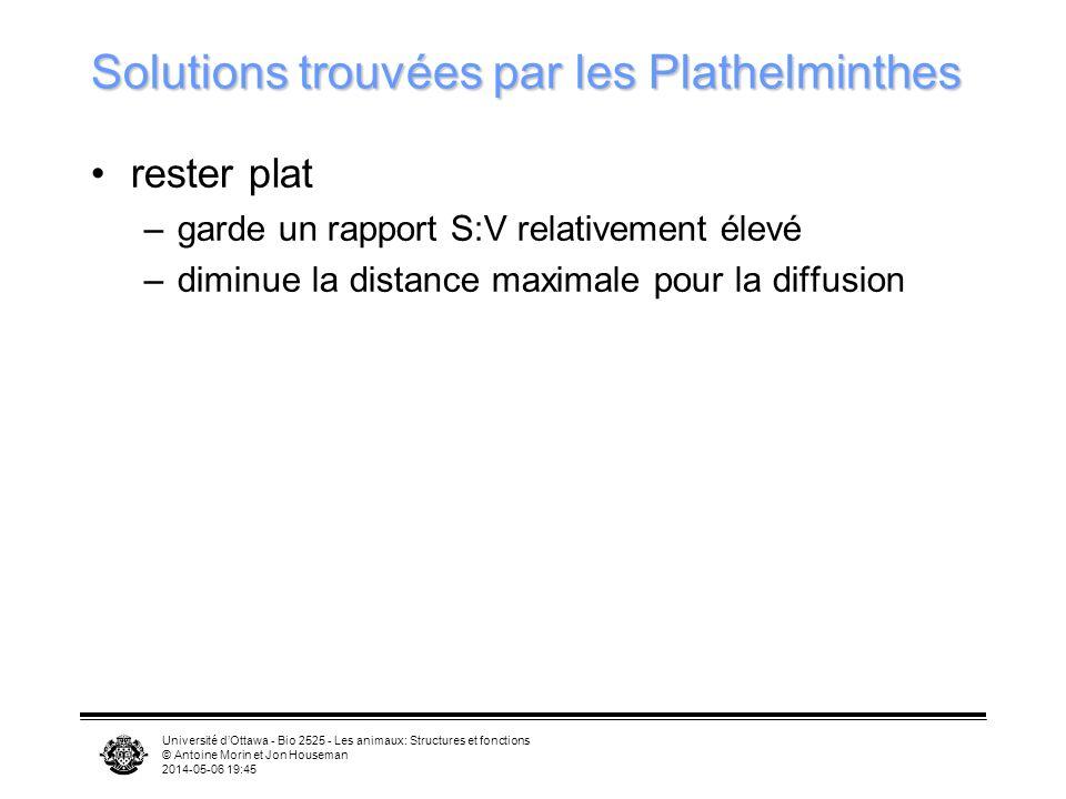 Solutions trouvées par les Plathelminthes