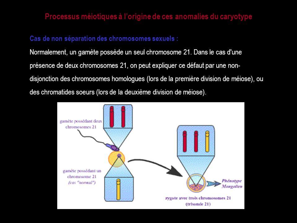 Processus méiotiques à l'origine de ces anomalies du caryotype