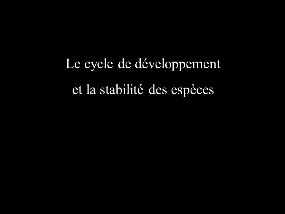Le cycle de développement et la stabilité des espèces