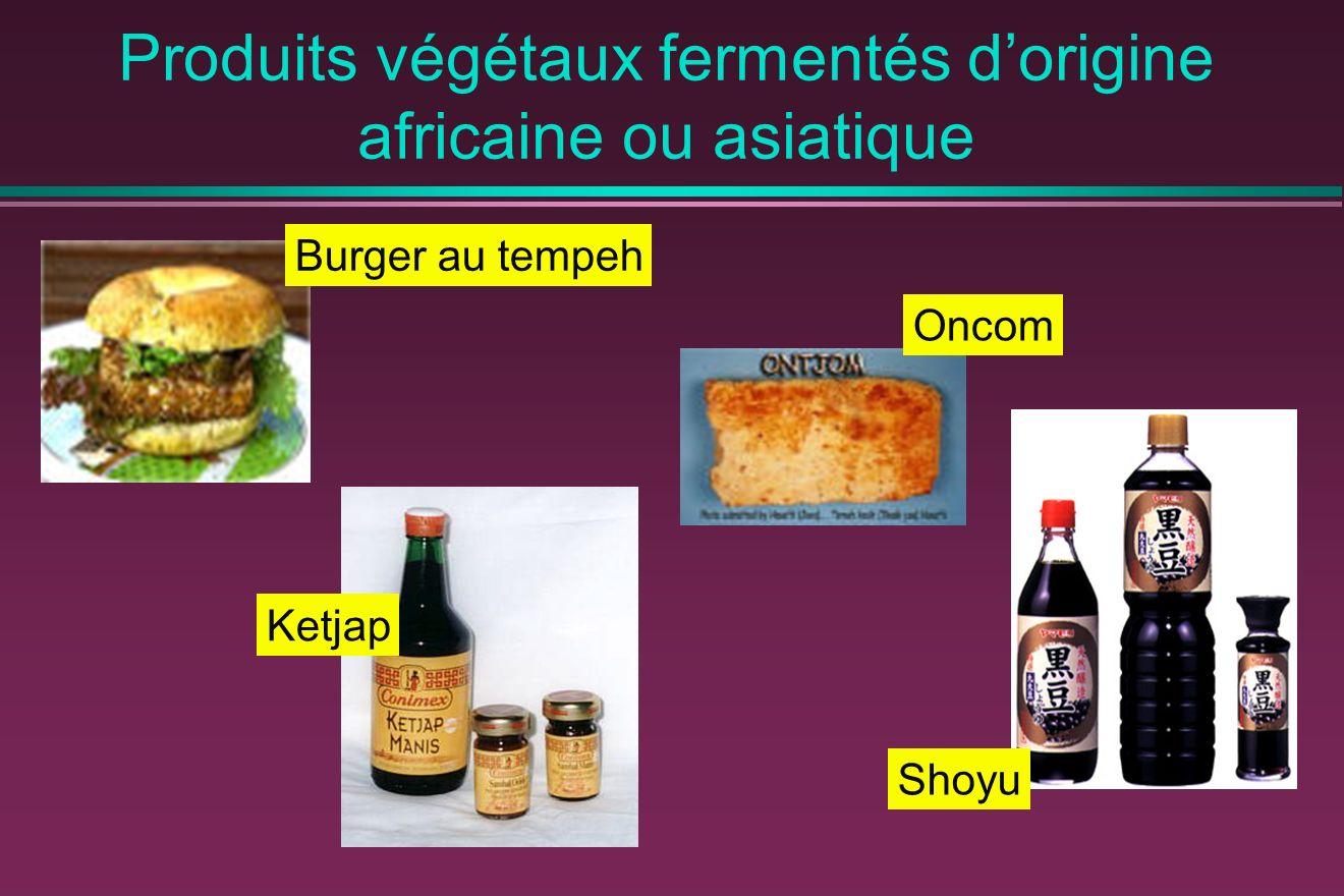 Produits végétaux fermentés d'origine africaine ou asiatique