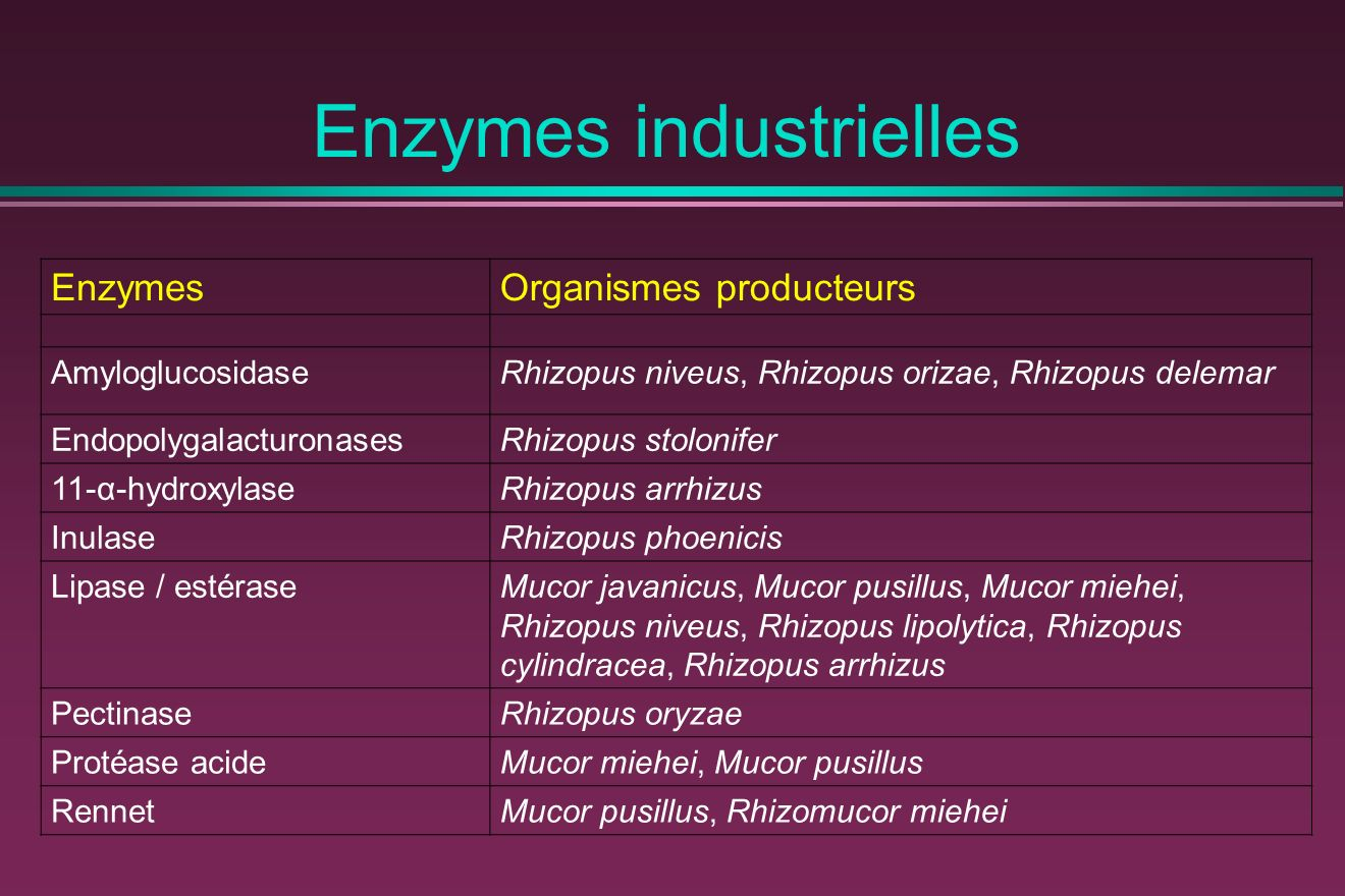 Enzymes industrielles