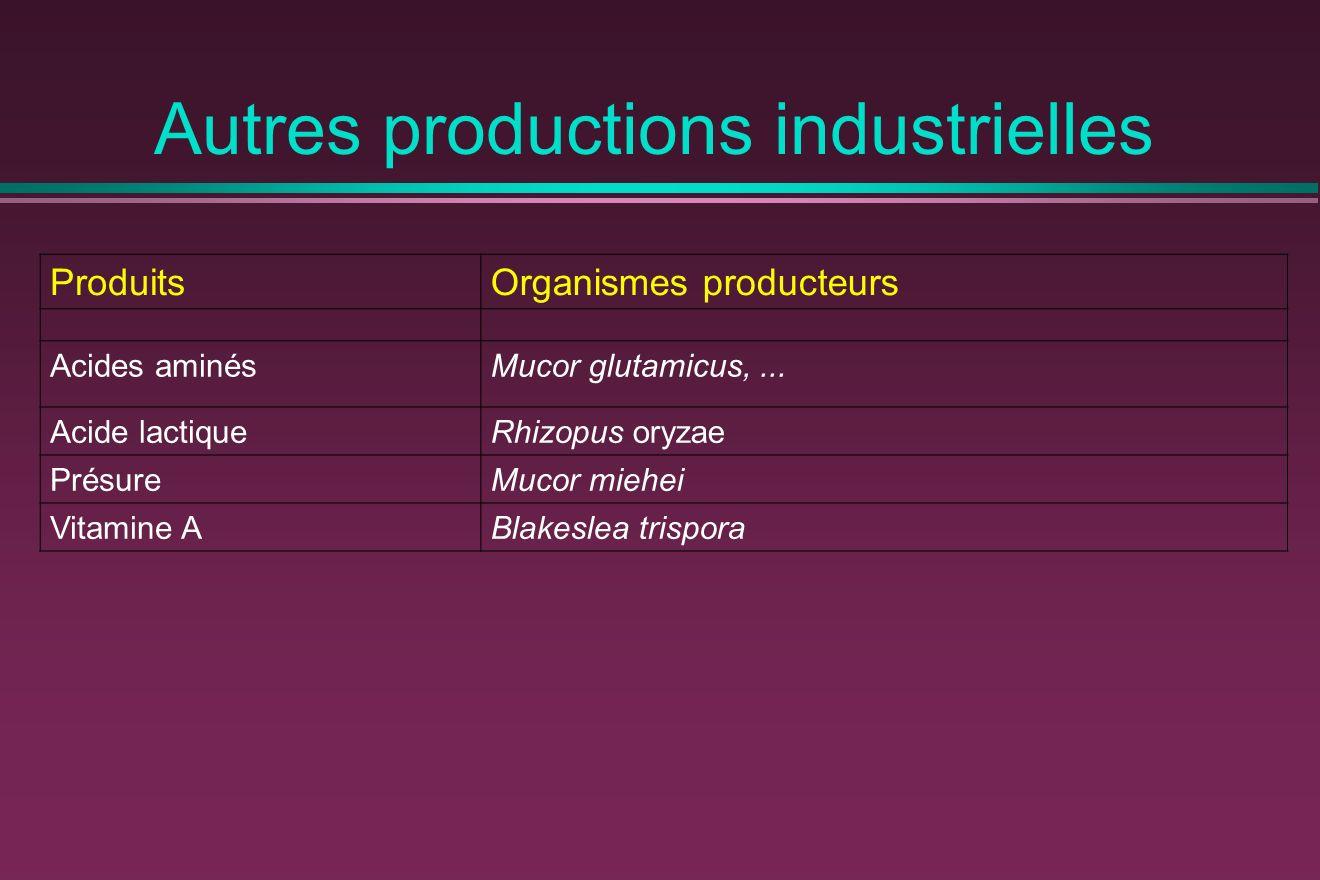 Autres productions industrielles