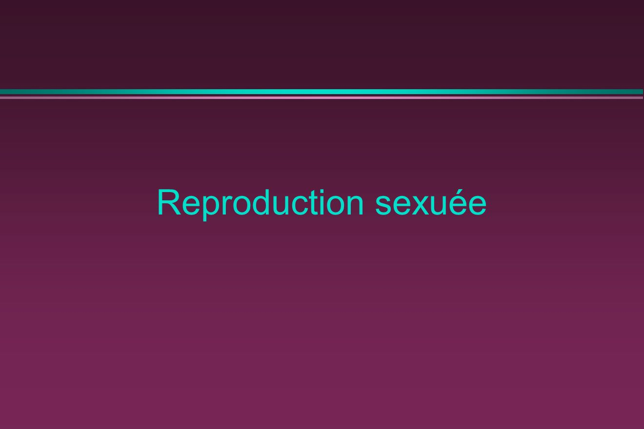 Reproduction sexuée