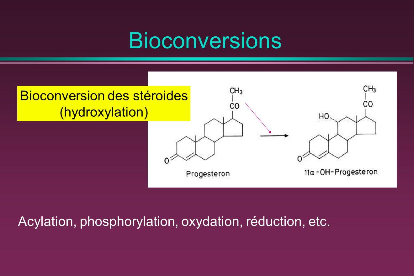Bioconversion des stéroides