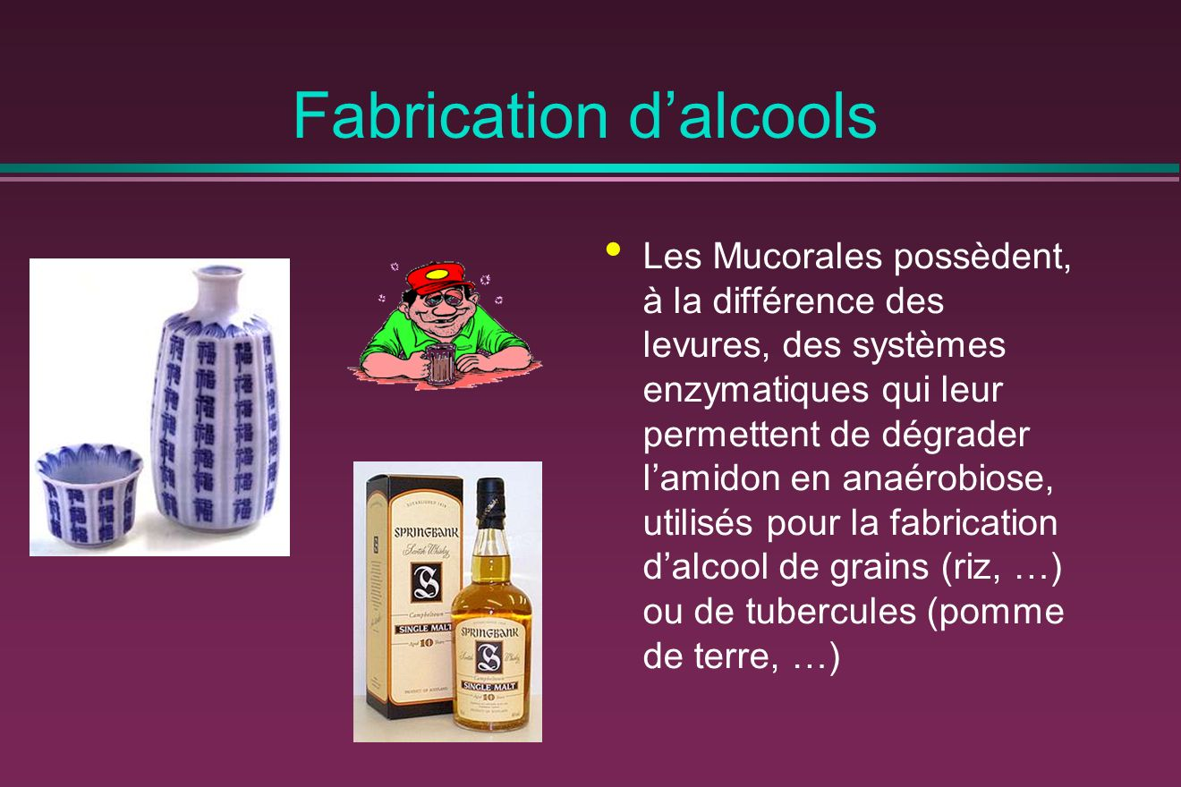 Fabrication d'alcools