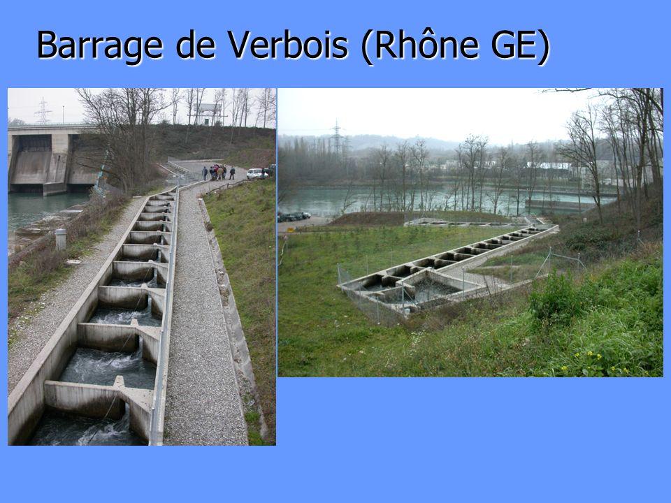 Barrage de Verbois (Rhône GE)
