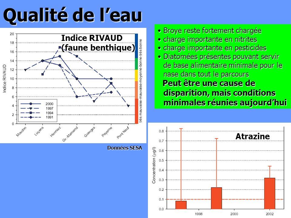 Qualité de l'eau Indice RIVAUD (faune benthique)