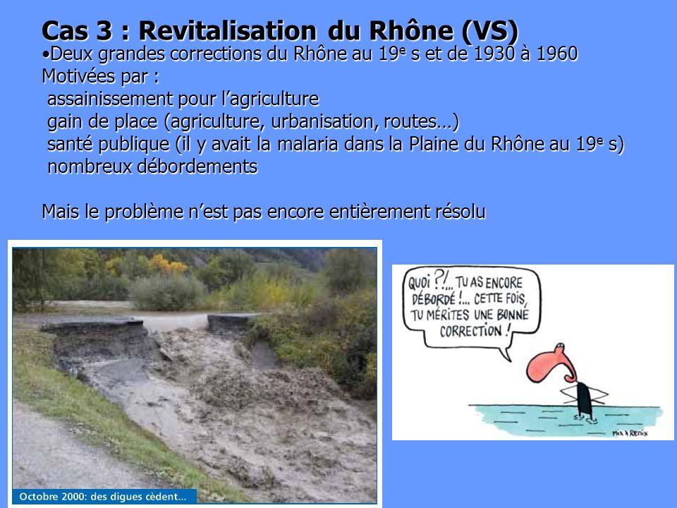 Cas 3 : Revitalisation du Rhône (VS)