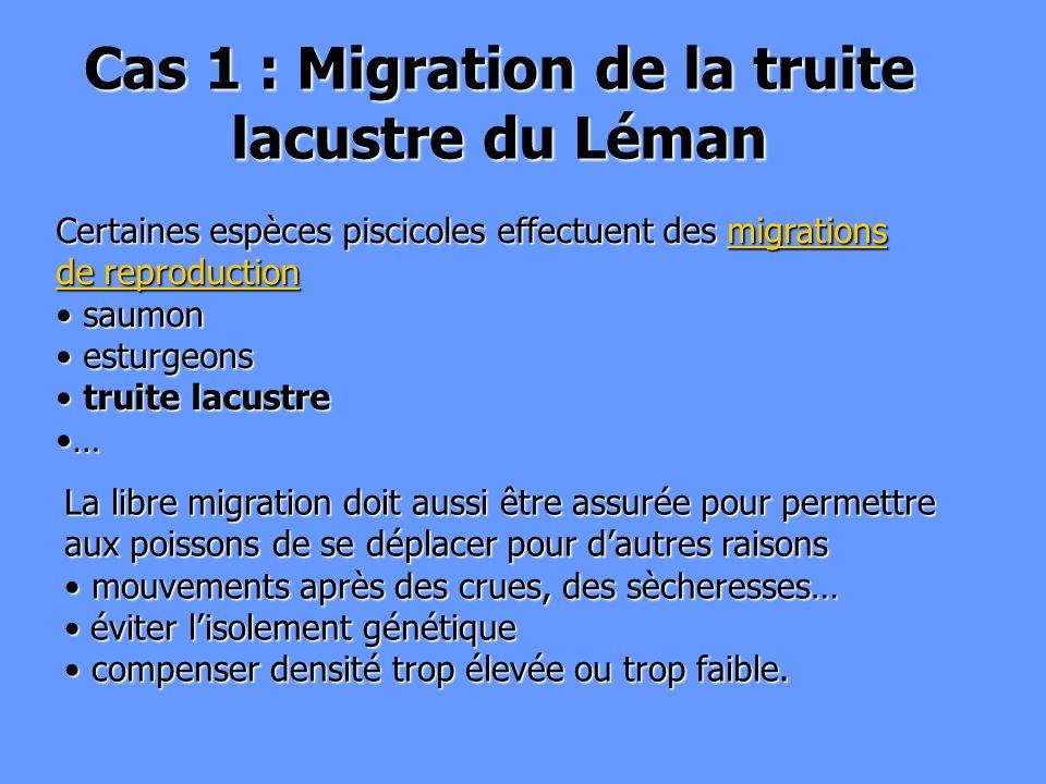 Cas 1 : Migration de la truite lacustre du Léman
