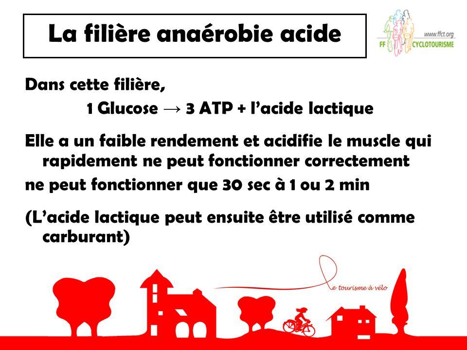 La filière anaérobie acide