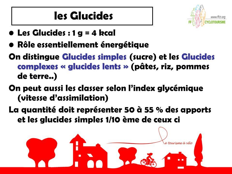 les Glucides Les Glucides : 1 g = 4 kcal