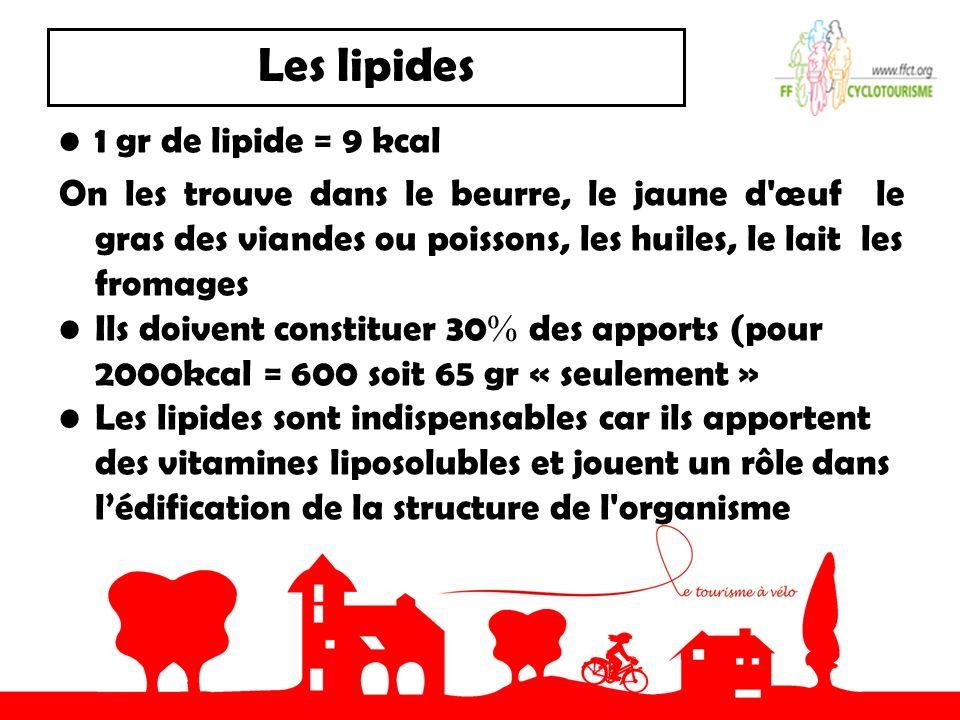Les lipides 1 gr de lipide = 9 kcal