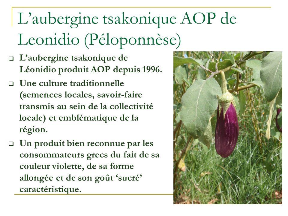 L'aubergine tsakonique AOP de Leonidio (Péloponnèse)