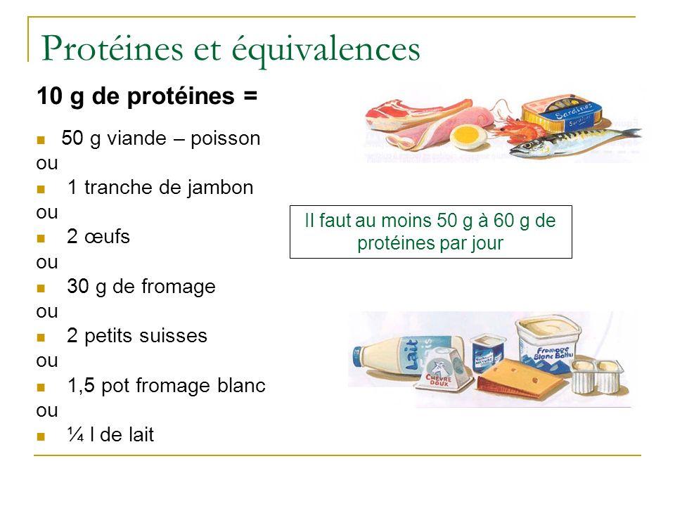 Protéines et équivalences