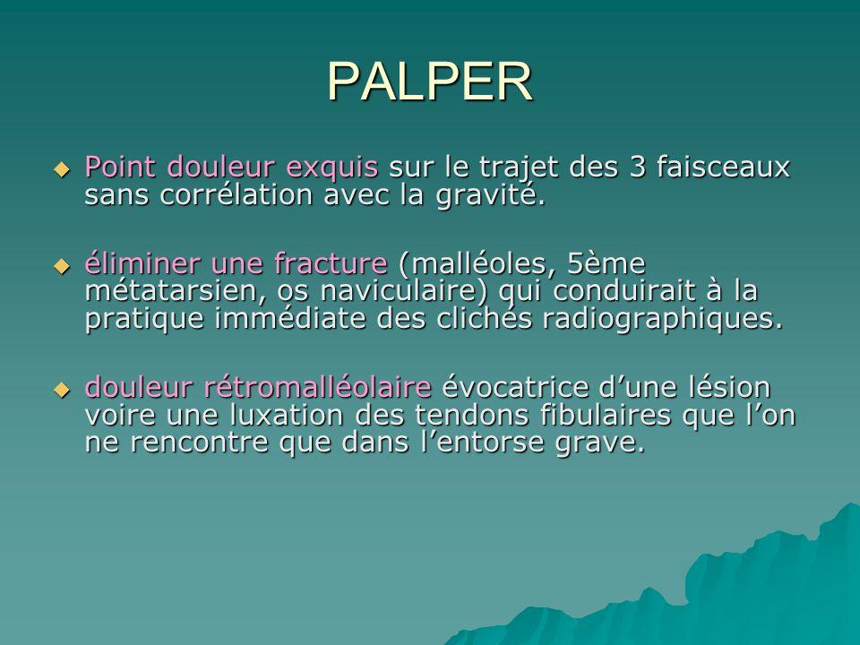 PALPER Point douleur exquis sur le trajet des 3 faisceaux sans corrélation avec la gravité.