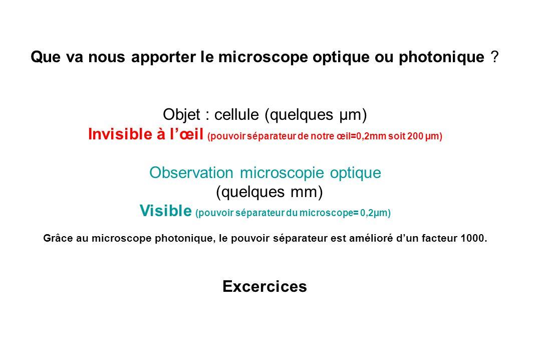 Visible (pouvoir séparateur du microscope= 0,2µm)