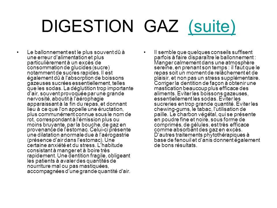 DIGESTION GAZ (suite)