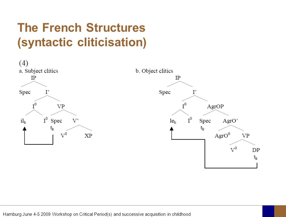 The French Structures (syntactic cliticisation)