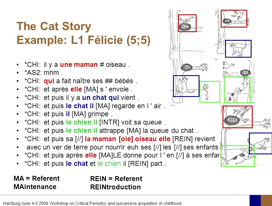 The Cat Story Example: L1 Félicie (5;5)
