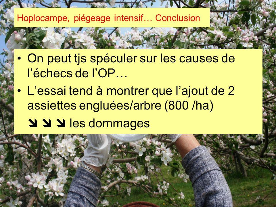 Hoplocampe, piégeage intensif… Conclusion