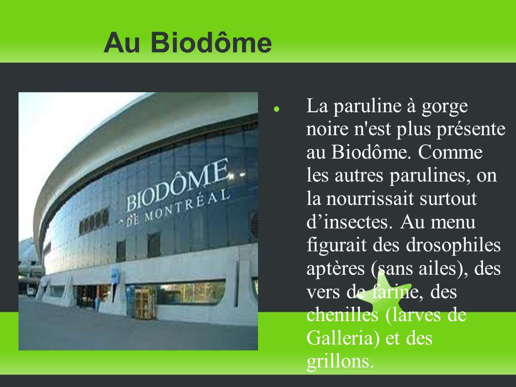 Au Biodôme