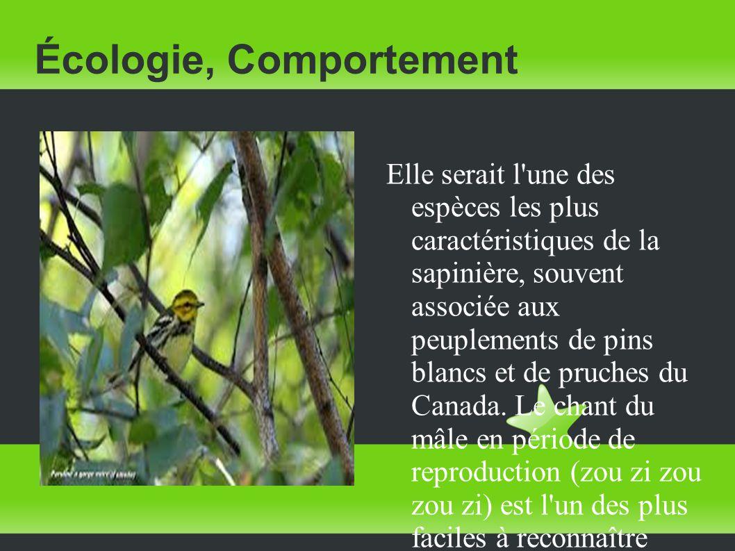 Écologie, Comportement