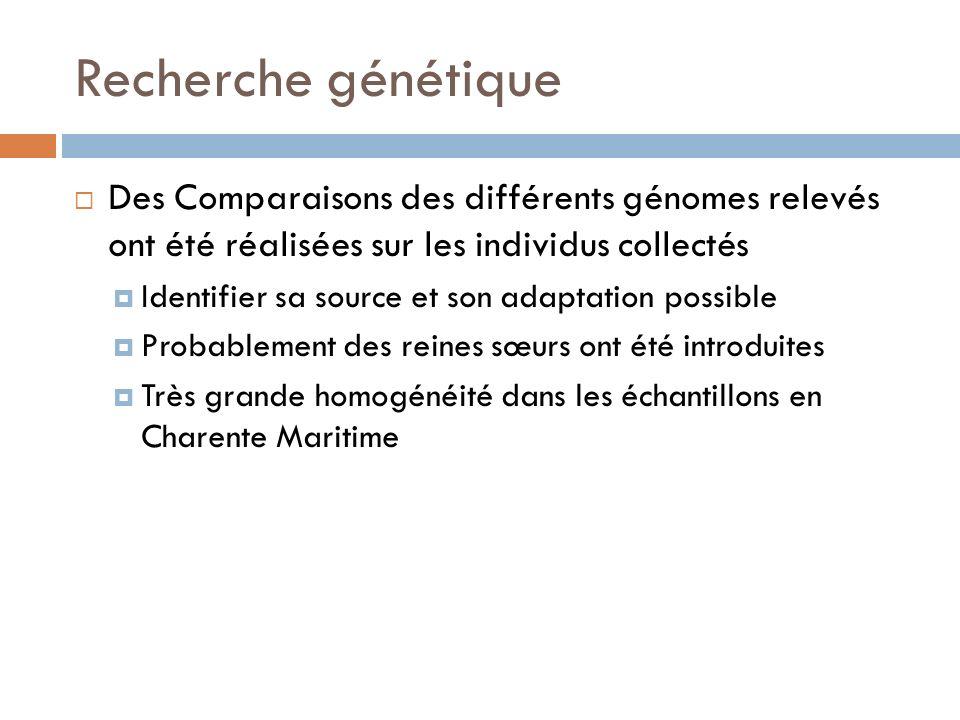 Recherche génétique Des Comparaisons des différents génomes relevés ont été réalisées sur les individus collectés.