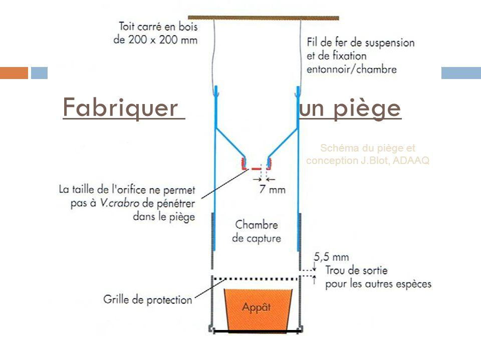 Schéma du piège et conception J.Blot, ADAAQ