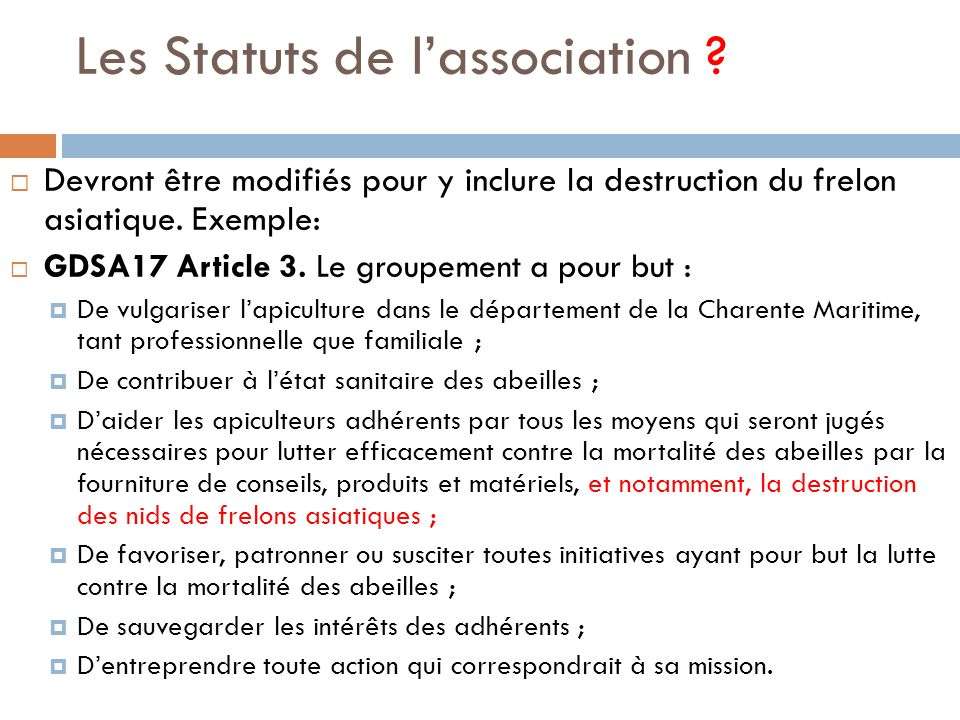 Les Statuts de l'association