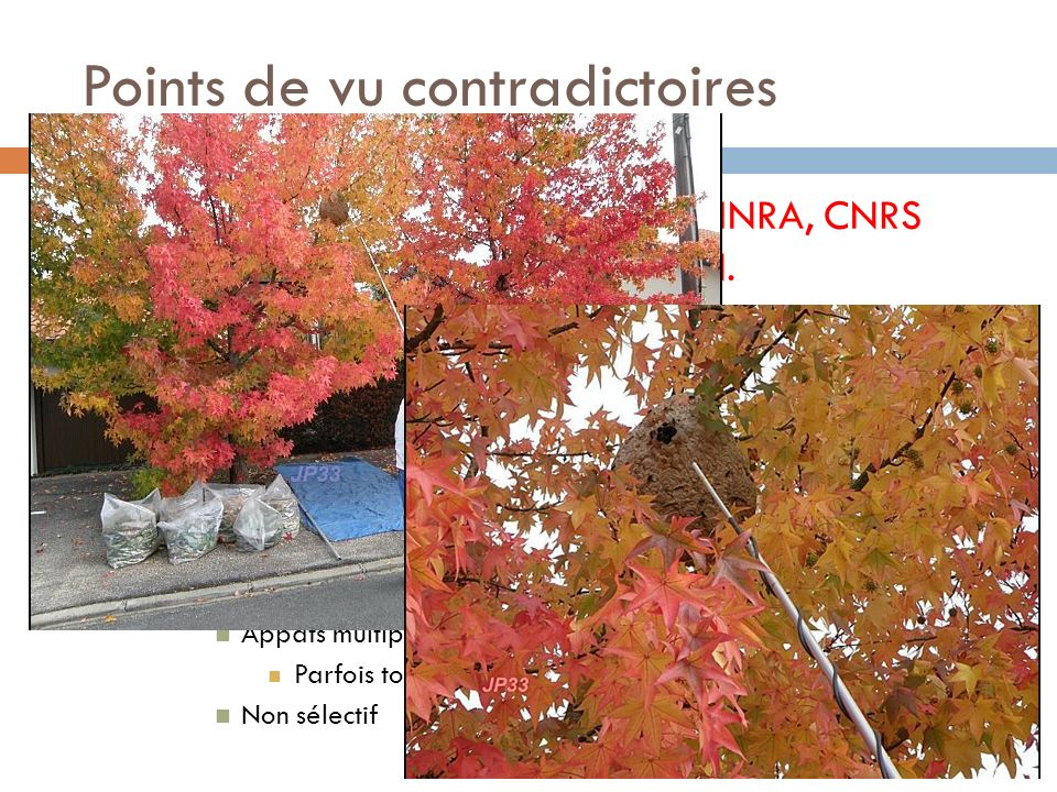 Points de vu contradictoires