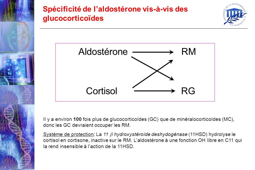 Aldostérone RM Cortisol RG