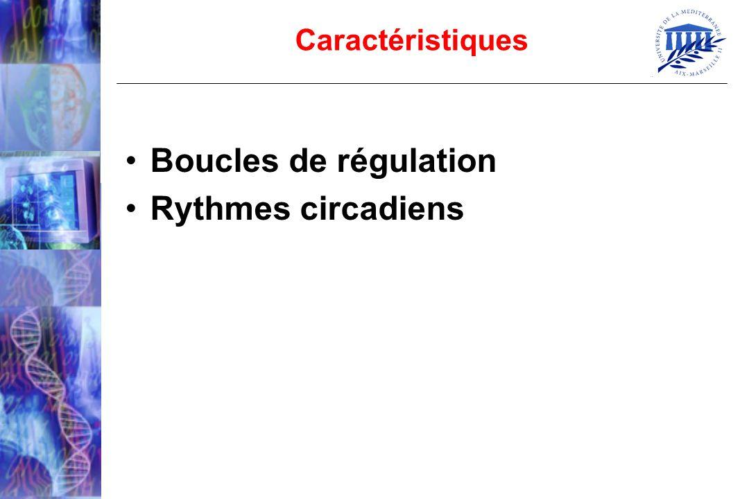 Caractéristiques Boucles de régulation Rythmes circadiens