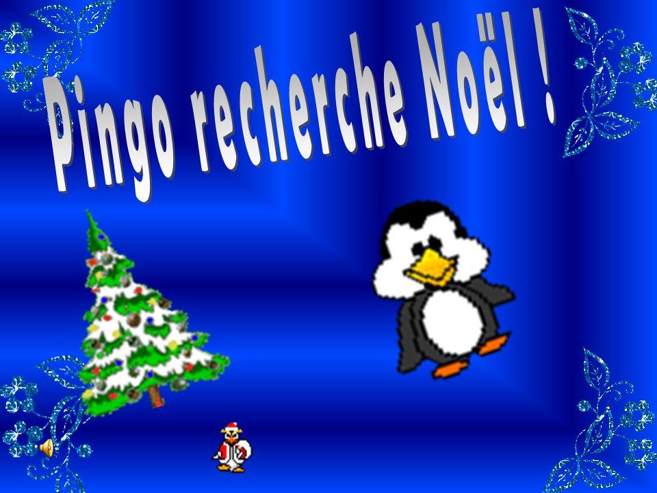 Pingo recherche Noël !