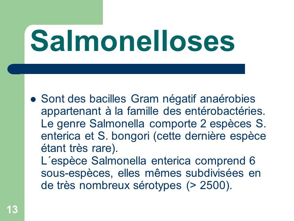 Salmonellose