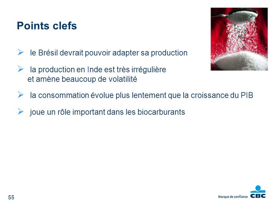 Points clefs le Brésil devrait pouvoir adapter sa production