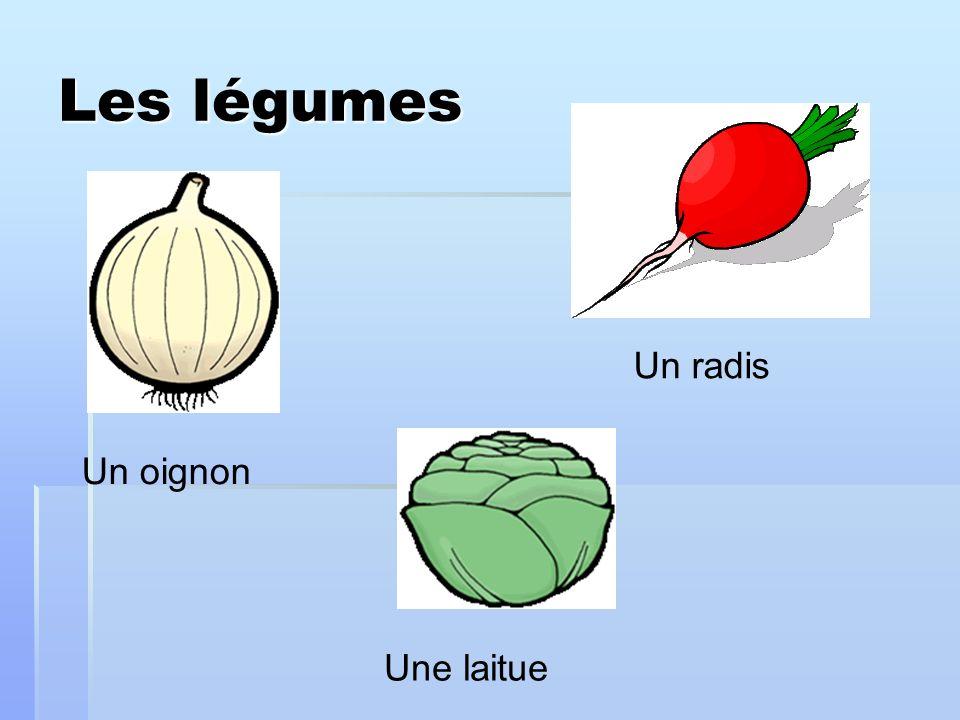 Les légumes Un radis Un oignon Une laitue