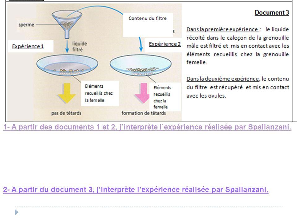 1- A partir des documents 1 et 2, j'interprète l'expérience réalisée par Spallanzani.