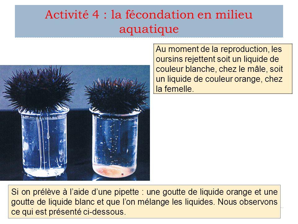 Activité 4 : la fécondation en milieu aquatique